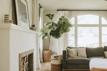 Best Tips for Empty Nester Home Decorating